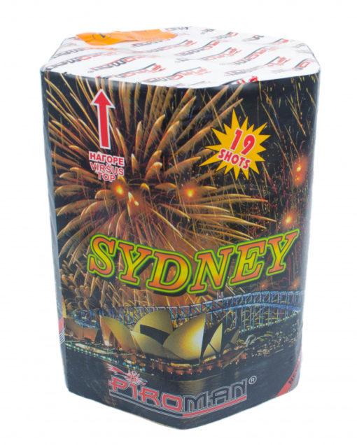 Sydney fejerverkai vilniuje